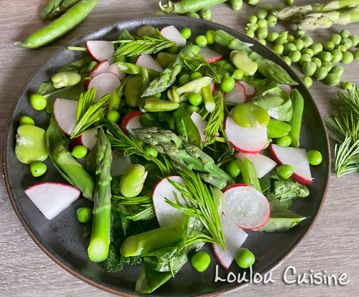 Salata cu muguri de brad si legume de primavara